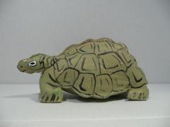 leather-tortoise