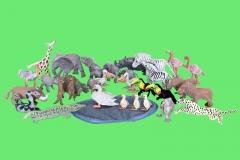 safari-on-green